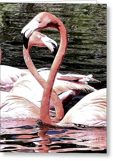 Pink Infinity Greeting Card by Lisa Renee Ludlum
