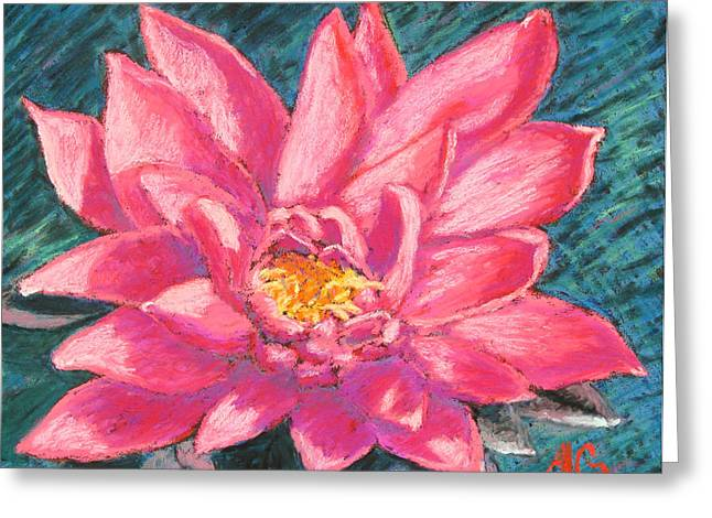 Print On Acrylic Pastels Greeting Cards - Pink Lotus Greeting Card by Abbie Groves
