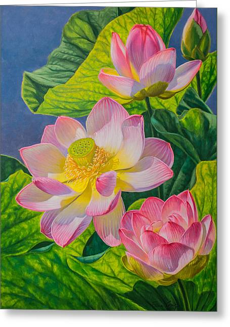 Pink Lotuses Greeting Card by Fiona Craig
