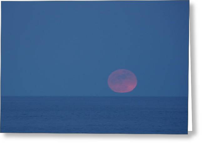 Sea Moon Full Moon Greeting Cards - Pink Moon Greeting Card by Lori Akers