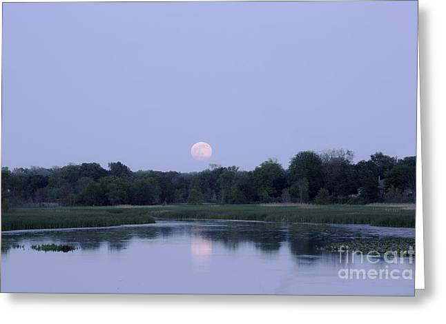 Moonrise Greeting Cards - Strawberry Moon Greeting Card by Denise Woldring