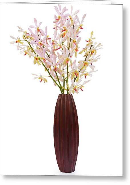 Softness Greeting Cards - Pink Orchid In Wood Vase Greeting Card by Atiketta Sangasaeng