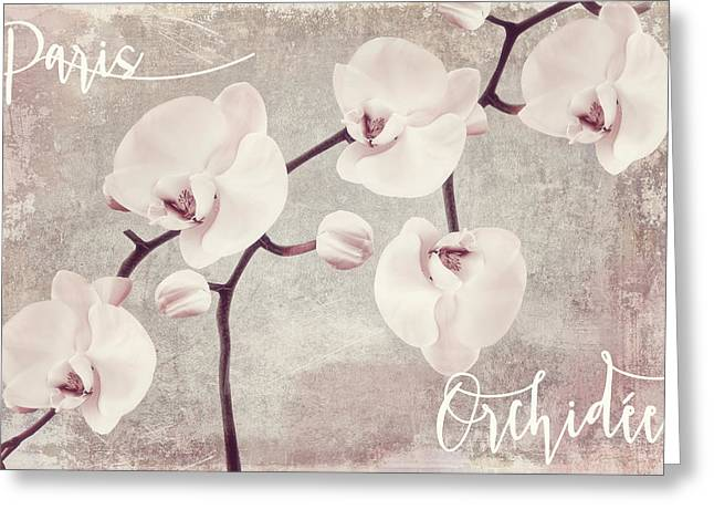 Pink Flower Branch Greeting Cards - Pink Orchids Greeting Card by Mindy Sommers