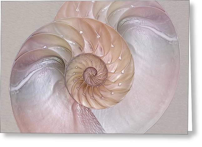 Ocean Images Greeting Cards - Pink Pearlescent Nautilus Square Greeting Card by Gill Billington