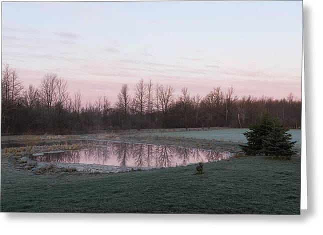 Gloaming Greeting Cards - Pink Pond - A Peaceful Daybreak On The Farm Greeting Card by Georgia Mizuleva