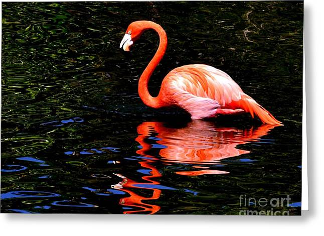 Pink Reflection Greeting Card by Lisa Renee Ludlum