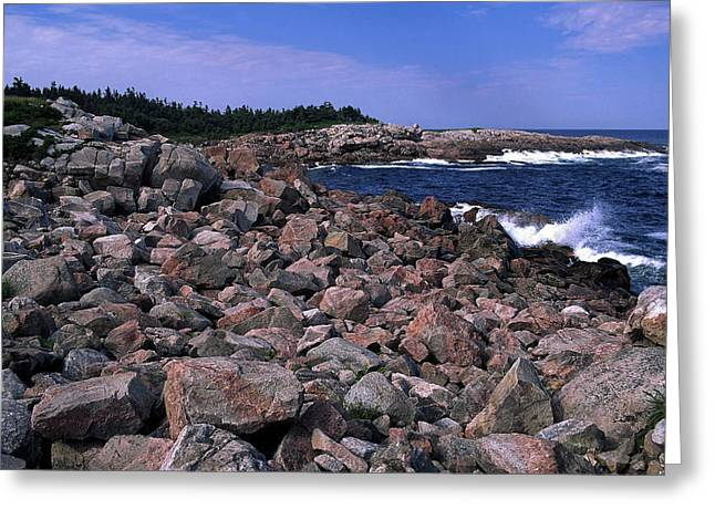 Pink Rock Shoreline Greeting Card by Sally Weigand