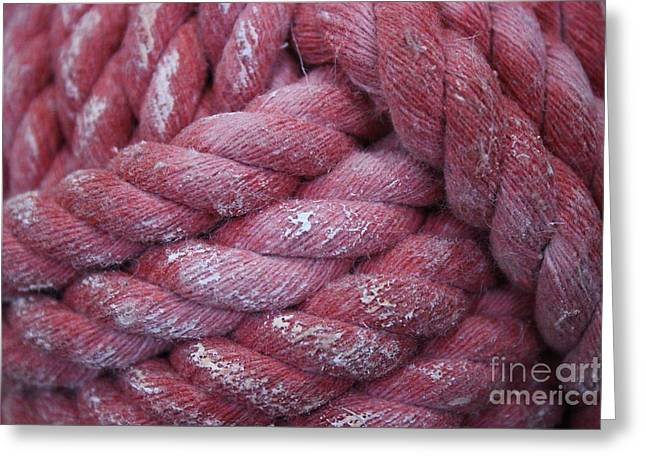 Pink Rope Greeting Card by Paulette Thomas