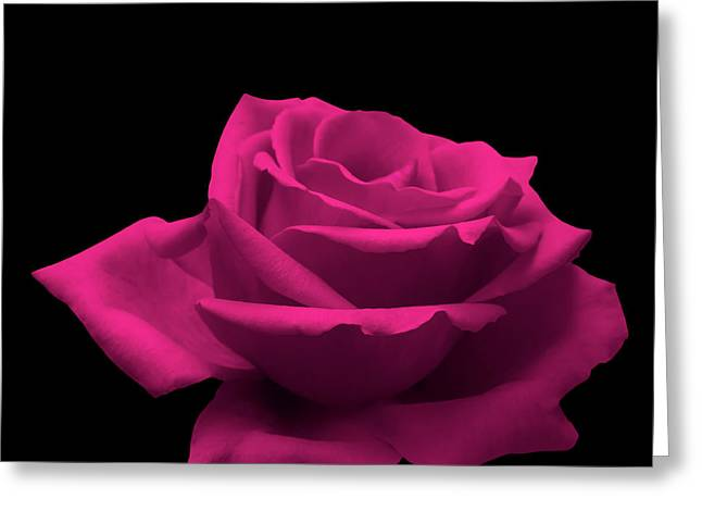 Signed Photographs Greeting Cards - Pink Rose Greeting Card by Wim Lanclus