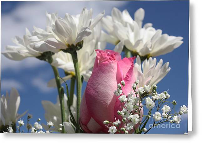 Babies Breath Greeting Cards - Pink Roses and Daisies Greeting Card by Marjorie Imbeau