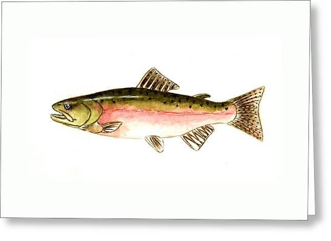 Salmon Paintings Greeting Cards - Pink Salmon Greeting Card by Michael Vigliotti