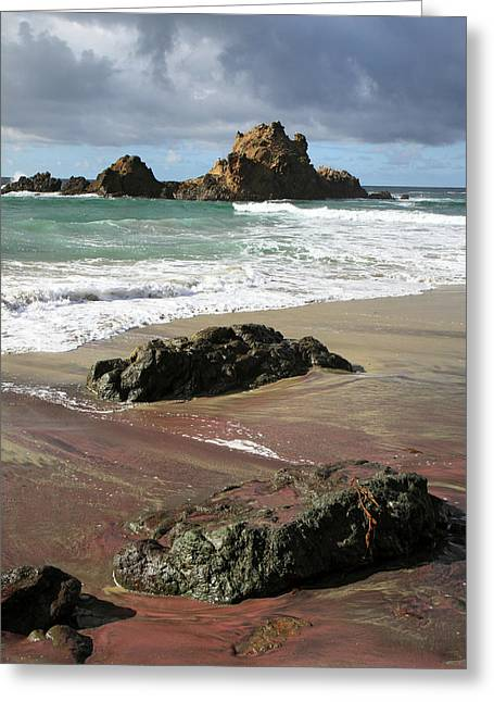 Big Sur California Greeting Cards - Pink sand beach Greeting Card by Pierre Leclerc Photography