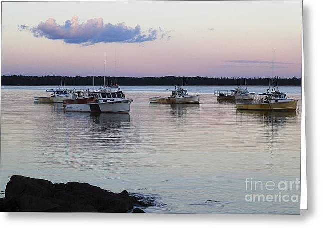 Prospects Greeting Cards - Pink Sky at Night Sailors Delight Greeting Card by Katie W