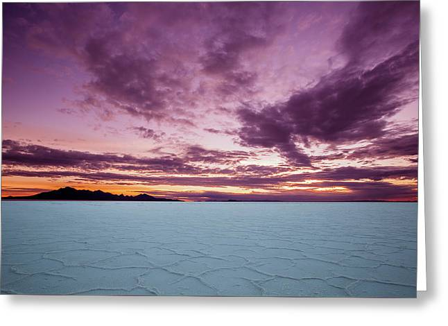 Pink Sunrise Greeting Card by Edgars Erglis
