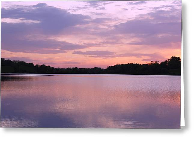 Fall Scenes Greeting Cards - Pink Sunset Greeting Card by Sheela Ajith