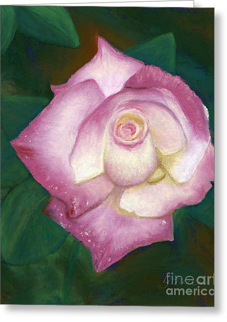 Rose Petals Pastels Greeting Cards - Pink Tipped Rose Greeting Card by Ginny Neece