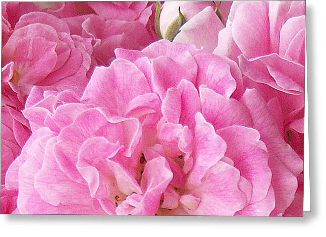 Pink Greeting Card by Tom Romeo