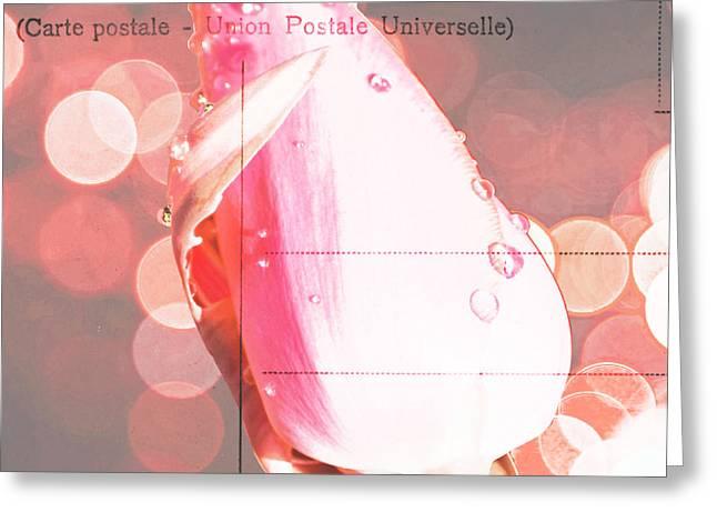 Award Winning Art Greeting Cards - Pink Tulip in Lights Vintage Ephemera Greeting Card by ArtyZen Studios - ArtyZen Home