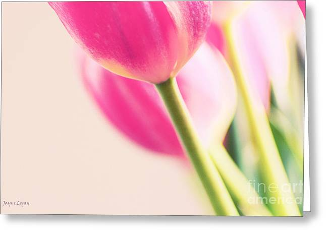 Artography Greeting Cards - Pink Tulips Greeting Card by Jayne Logan Intveld