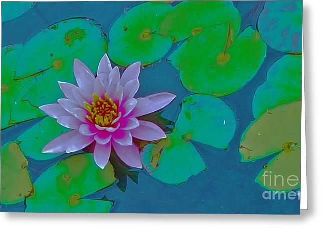 Bloosom Greeting Cards - Pink Water Lily  Greeting Card by Jasna Gopic