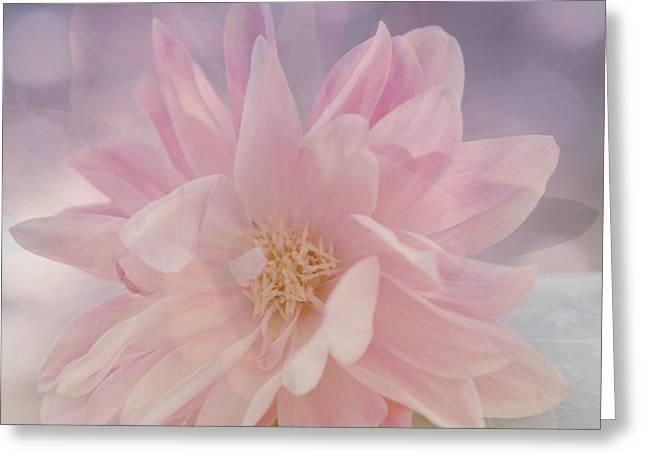 Pink Whisper Greeting Card by Bonnie Bruno