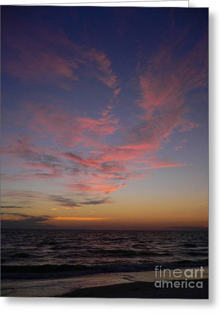 Beach Photos Greeting Cards - Pink Wisps Greeting Card by Lowell Anderson