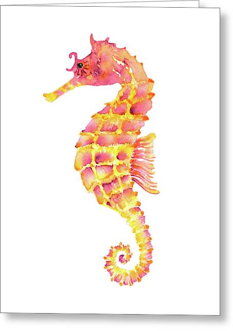 Pink Yellow Seahorse Greeting Card by Amy Kirkpatrick