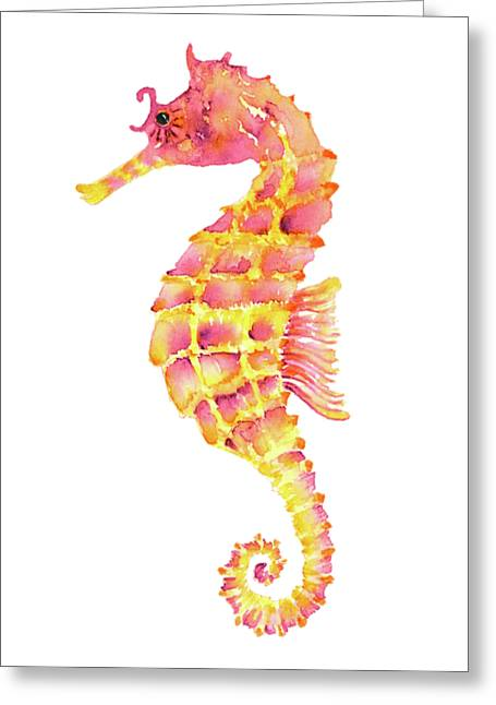 Pink Yellow Seahorse - Square Greeting Card by Amy Kirkpatrick