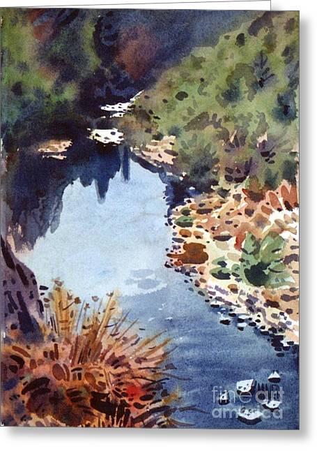 Pinnacles Reflections Greeting Card by Donald Maier