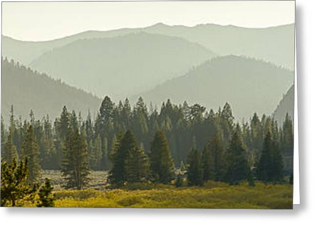 Pioneer Mountain Light Greeting Card by Idaho Scenic Images Linda Lantzy