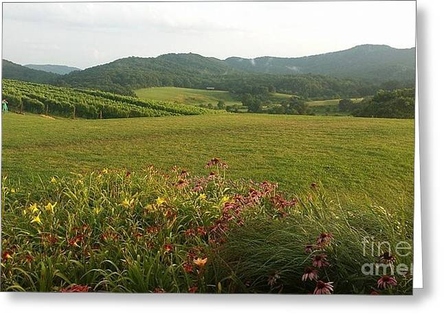 Pippen Hill Countryside Greeting Card by Charlotte Gray