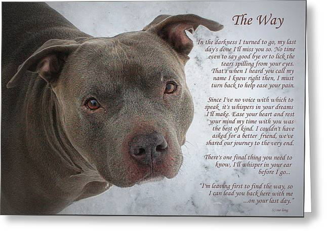 Best Friend Greeting Cards - Pit Bull  The Way Greeting Card by Sue Long