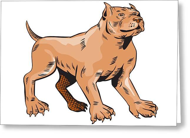 Guard Dog Greeting Cards - Pitbull Dog Mongrel Standing Etching Greeting Card by Aloysius Patrimonio