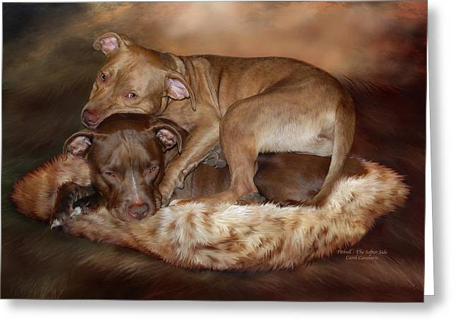 Bulls Mixed Media Greeting Cards - Pitbulls - The Softer Side Greeting Card by Carol Cavalaris
