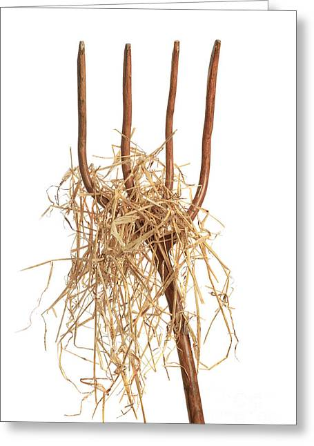 Pitchfork Greeting Cards - Pitchfork With Hay Greeting Card by Amanda And Christopher Elwell