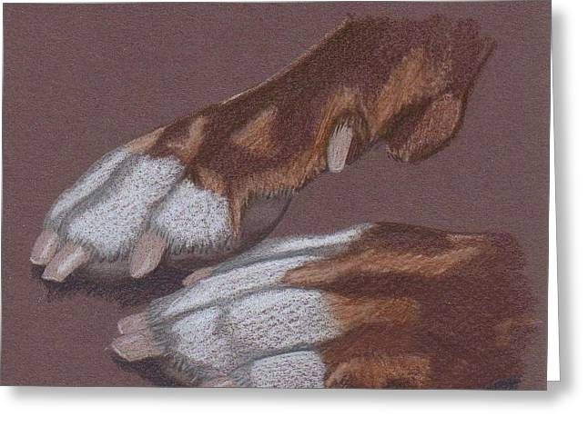 Pitty Feet Greeting Card by Stacey Jasmin