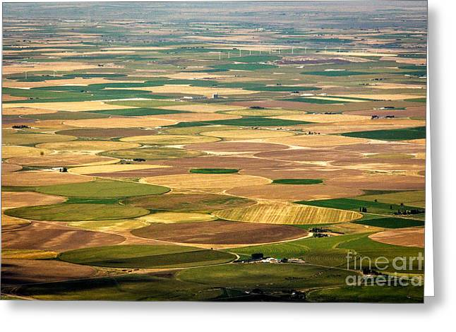 Cultivation Digital Art Greeting Cards - Pivots Galore Idaho Landscapes by Kaylyn Franks Greeting Card by Kaylyn Franks