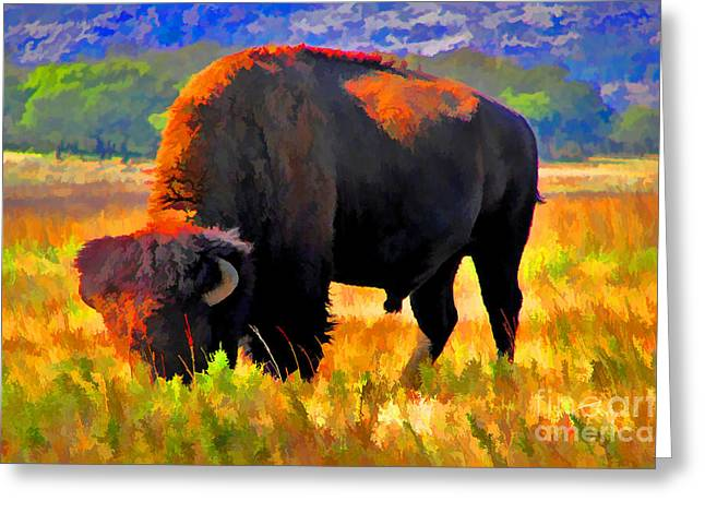Bison Mixed Media Greeting Cards - Plains Buffalo Greeting Card by JohnD Smith