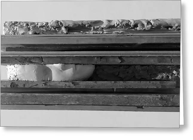 Great Sculptures Greeting Cards - Plank Face Horizontal B W Greeting Card by Rob Hans