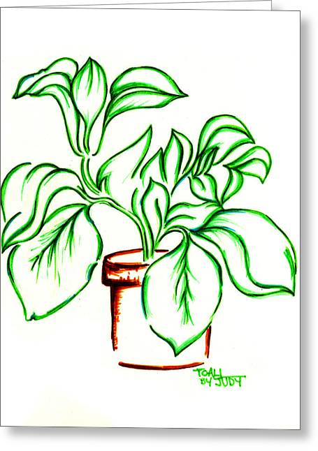 Potted Plants Drawings Greeting Cards - Plant Greeting Card by Judith Herbert