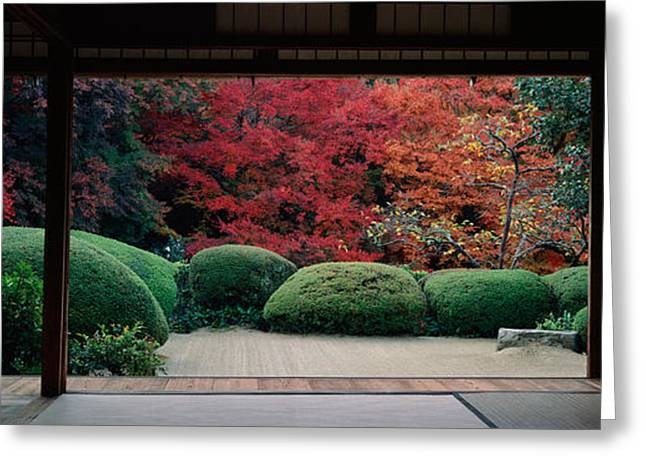 Kyoto Prefecture Greeting Cards - Plants And Maple Trees Viewed Greeting Card by Panoramic Images