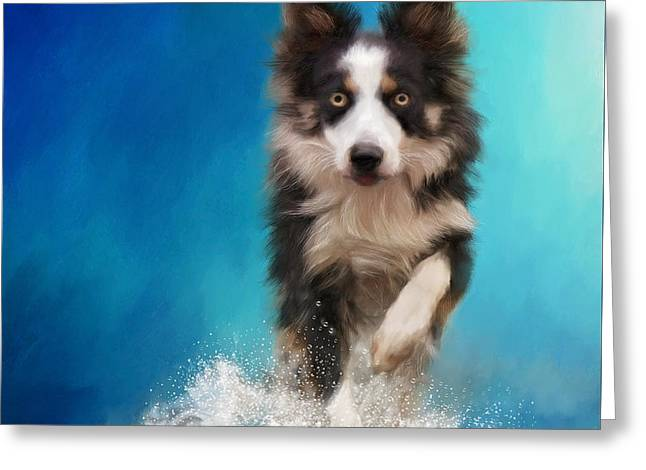 Dogs Digital Art Greeting Cards - Playing in the water Greeting Card by Johanne Dauphinais