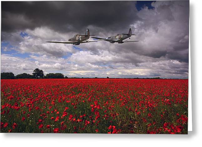 Fighters Greeting Cards - Playtime Greeting Card by Jason Green