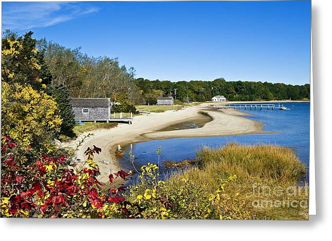 Pleasant Bay Greeting Card by John Greim