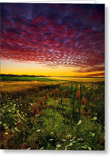 Filed Greeting Cards - Pleasant Praire Greeting Card by Phil Koch