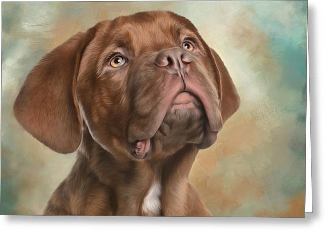 Puppy Digital Greeting Cards - Please Greeting Card by Sandy Oman