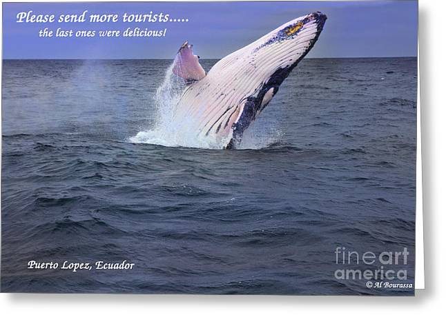 Hoodies Greeting Cards - Please Send More Tourists - Humpback Whale Greeting Card by Al Bourassa