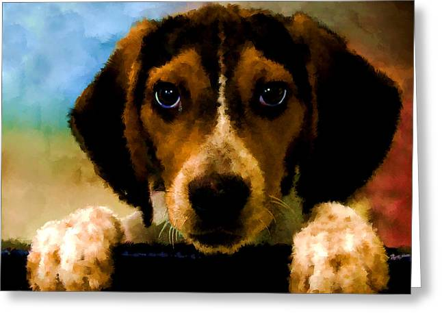 Puppies Digital Greeting Cards - Please take me home Greeting Card by Thanh Thuy Nguyen