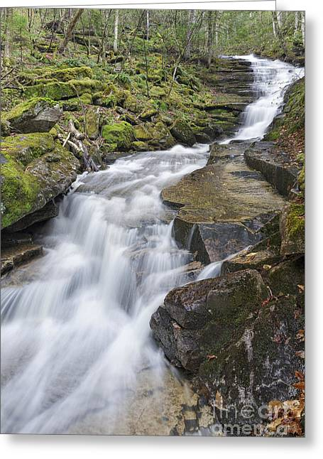 New England Snow Scene Greeting Cards - Plimpton Falls - White Mountains New Hampshire USA  Greeting Card by Erin Paul Donovan