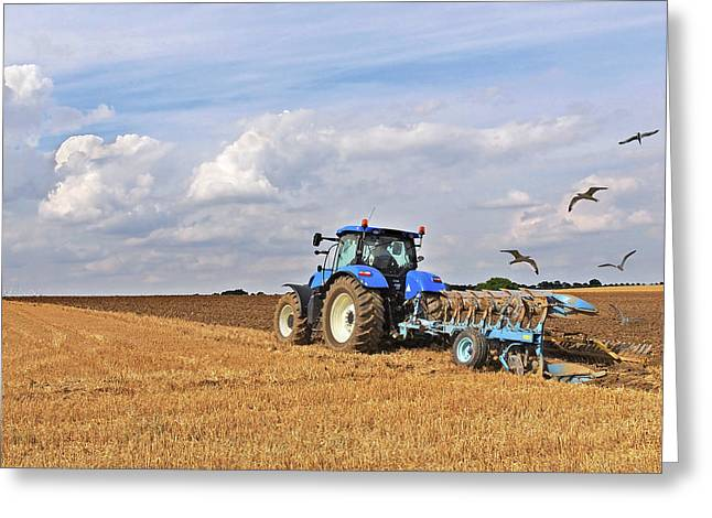 Flying Seagull Greeting Cards - Ploughing After The Harvest - Square Greeting Card by Gill Billington